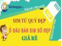 Giới thiệu địa chỉ bán sim tứ quý trả góp giá rẻ tại Nam Định