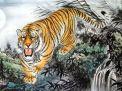 Sim năm sinh 1998 - Mậu Dần - Chúa Tể Sơn Lâm