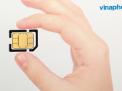 Có nên lựa chọn sim số đẹp Vinaphone 091 giá rẻ hay không?
