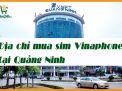 Mua sim Vinaphone tại Quảng Ninh và những điều bạn cần biết