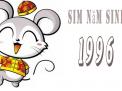 Làm thế nào để chọn sim phong thủy hợp tuổi cho người sinh năm Bính Tý 1996