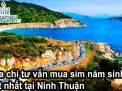 Địa chỉ tư vấn mua sim năm sinh tốt nhất tại Ninh Thuận