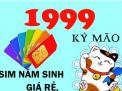 Những điểm lưu ý khi chọn sim phong thủy hợp tuổi cho người sinh năm Kỷ Mão (1999)