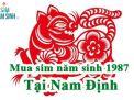 Địa chỉ mua sim năm sinh 1987 tại Nam Định UY TÍN
