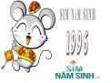 Cách chọn sim năm sinh hợp tuổi Bính Tý (1996)