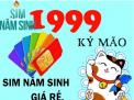 Ý nghĩa và cách chọn sim năm sinh 1999 hợp phong thủy