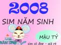 Sim năm sinh 2008 phù hợp với những con số nào?