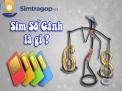 Dễ dàng mua sim số gánh trả góp lãi suất 0 đồng tại simtragop.vn